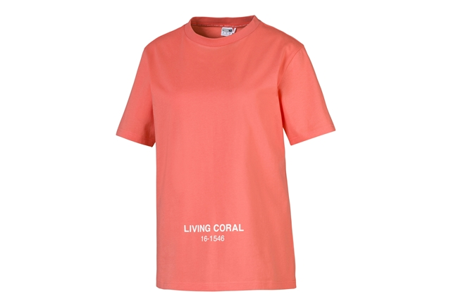 80LIVING CORAL
